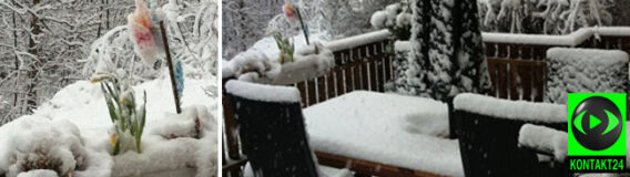 Sztokholm zasypany kwietniowym śniegiem. Internauci przesyłają zdjęcia i filmy