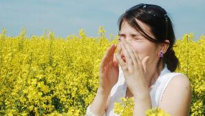 Kilka słów o alergenach
