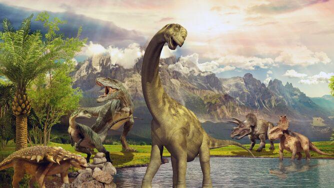 """Dinozaurom też sztywniały stawy. <br />""""To pierwszy stwierdzony przypadek"""""""