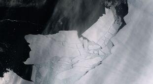 Lodowce Antarktyki topnieją w zastraszającym tempie