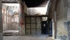 Materiał wydobyto z ciała w starożytnym mieście Herkulanum (Pier Paolo Petrone, Department of Advanced Biomedical Sciences, University of Naples, Naples Italy)