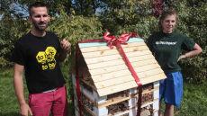 Hotel dla pszczół już działa w Warszawie