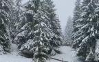 Nagły atak zimy w Rumunii